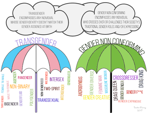 Transpire Help illustration showing gender identity terminology.