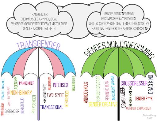 Transpire Help illustration showing gender identity terminology.